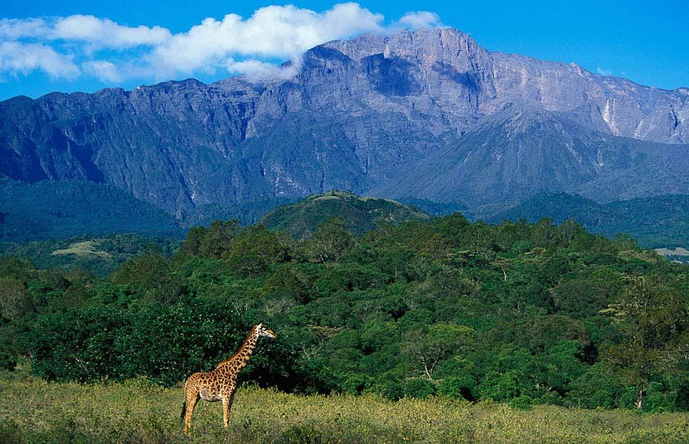 Arusha National Park 1